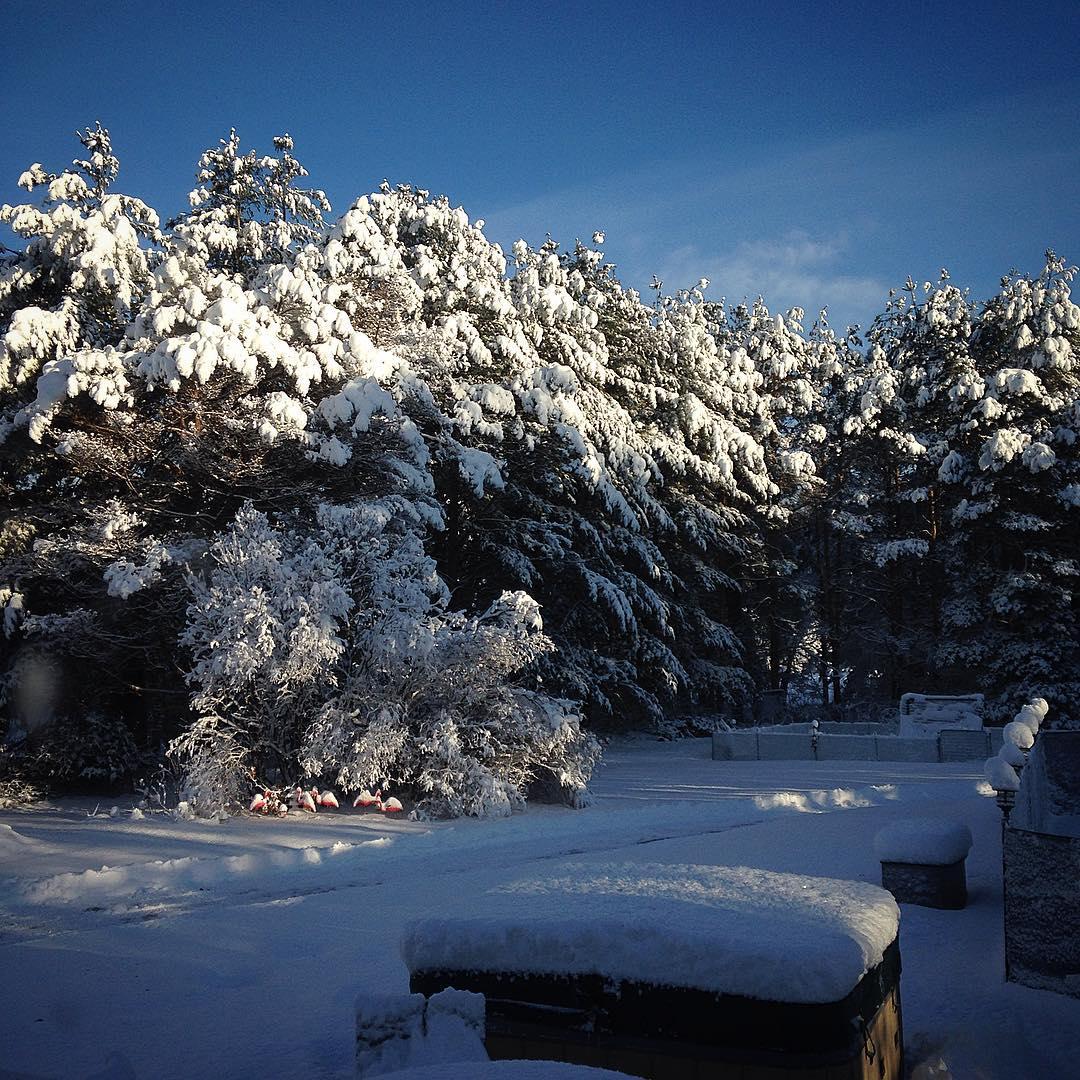It's a goddamn Winter wonderland. I hate Winter wonderlands.