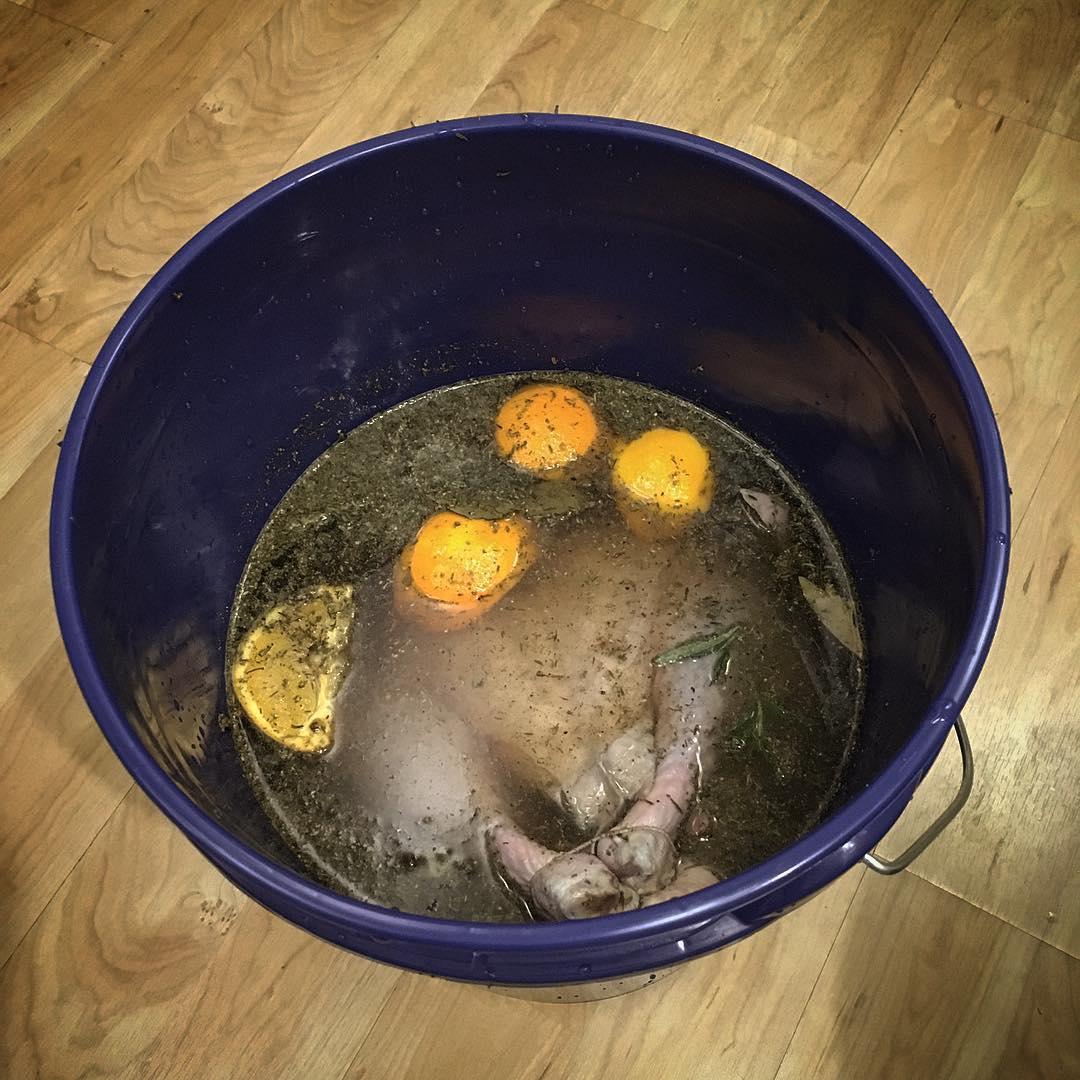 Blue bucket brine