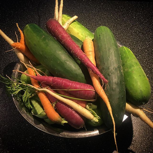 Carrots and cukes!