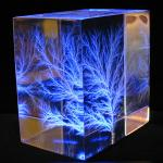 Captured Lightning Scuplture - Lichtenberg Figures